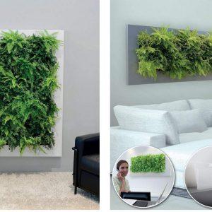 Növényképek